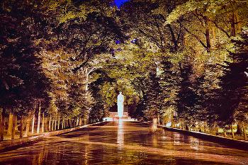 Харьковский лесопарк - не редкий выбор видеооператоров